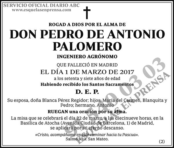 Pedro de Antonio Palomero